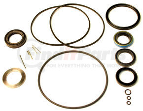 RG49210 by HALDEX - Seal Kit for Sheppard 492 Series Steering Gear