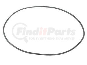 106091 by GEHL - GEHL ORIGINAL OEM, BACK UP RING, REAR AXLE, 10XX